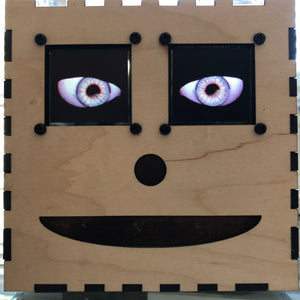 Animated Eyes in a Box, powered by Raspberry Pi