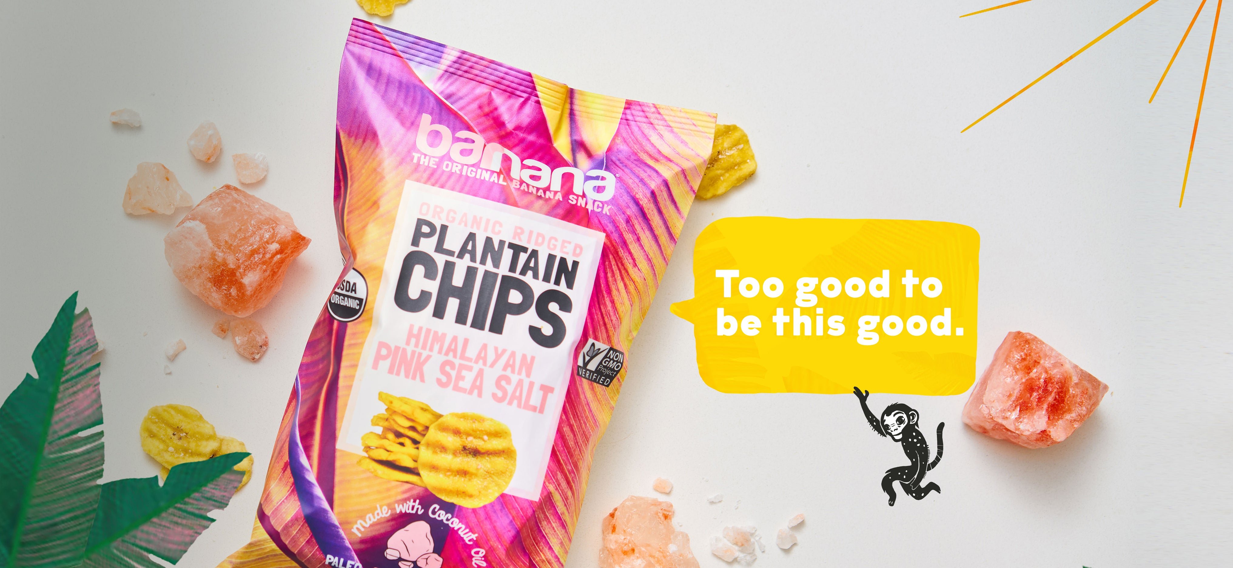 plantain chips barnana