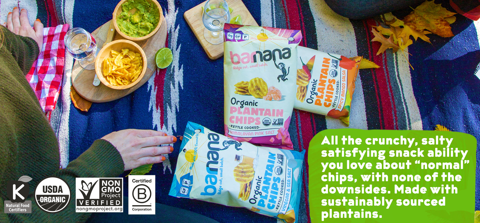 plantain chips organic