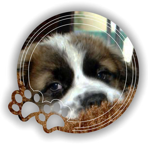 Circle Paw Prints Engraved Acrylic Mirror