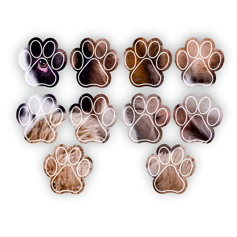 Paw Print Mini Craft Sized Acrylic Mirrors (10Pk) two sizes available
