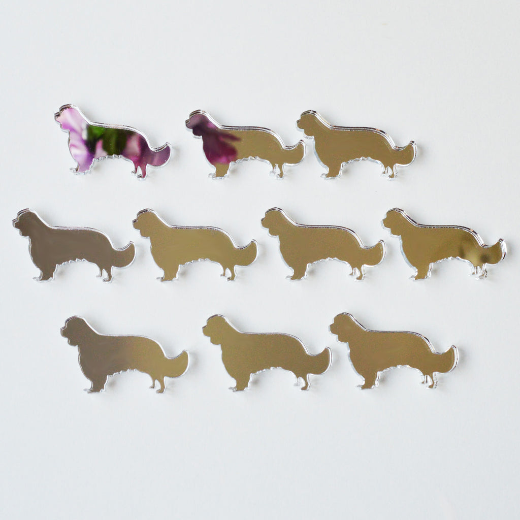 Cavalier King Charles Spaniel Dog Mini Craft Sized Acrylic Mirrors (10Pk) - Suave Petal