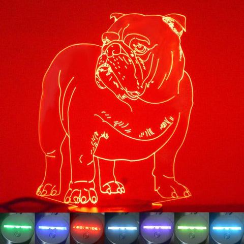 English Bulldog Colour Changing LED Acrylic Light - Suave Petal
