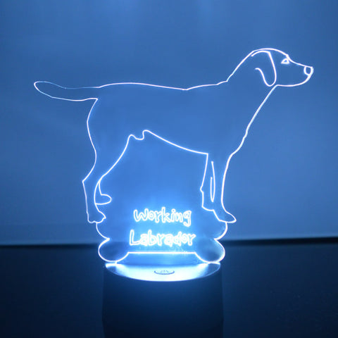 Working Labrador Dog Colour Changing LED Acrylic Light - Suave Petal