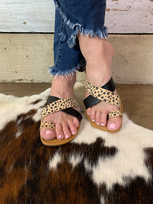 Leopard and Black Strap Sandal