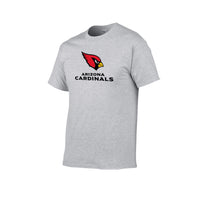 Cardinals Arizona 2