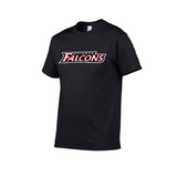 Falcons Atlanta 1