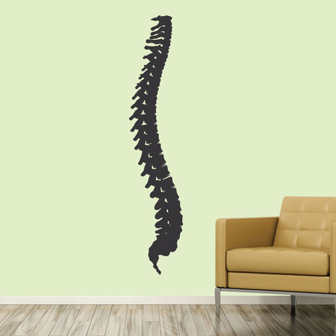Spine, Wall Decal, 0402, Chiropractic office wall graphics, Bones