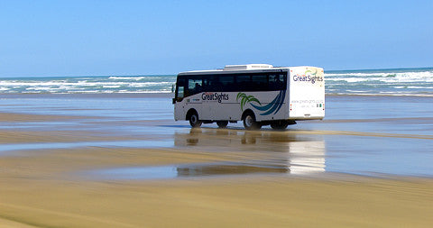 90 Mile Beach, Bus Tour, North Island, New Zealand