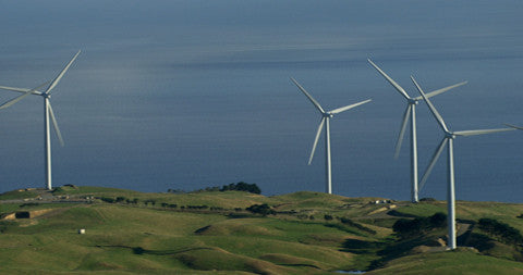 Windmills on Hills, Wellington, New Zealand