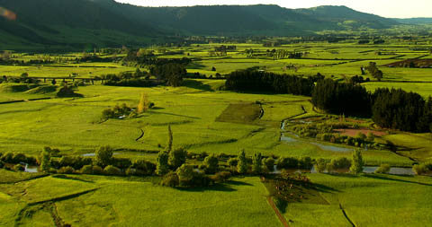Farmland, New Zealand