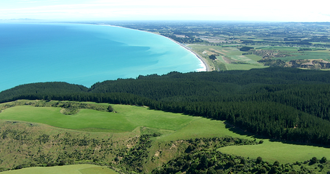 Amberley Beach, South Island, NZ