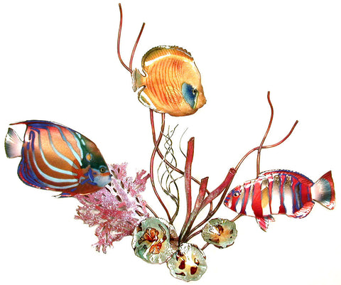 Blue Ring Angelfish, Golden Butterfly Fish, Harlequin Tuskfish & Coral