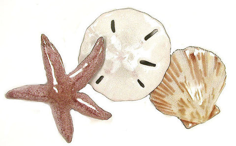 Starfish, Sand Dolar, Seashell in Beach Colors