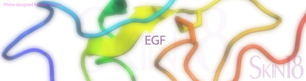 What is EGF in skin care and what do they do to heal skin?