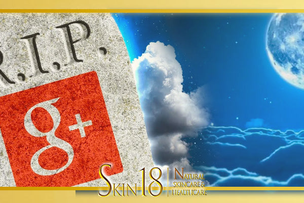 (eMarketing) The R.I.P Social Networking Site - Google Plus