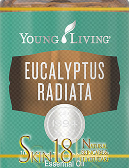Eucalyptus Radiata Essential Oil | Young Living | PNG