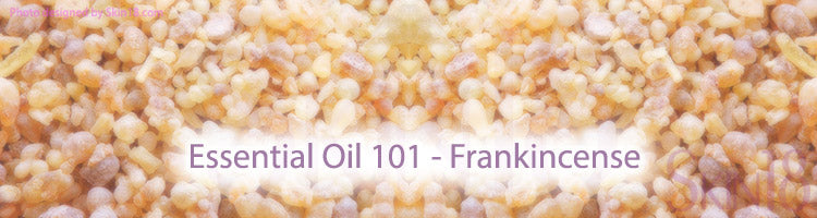 Essential Oil 101 - Frankincense