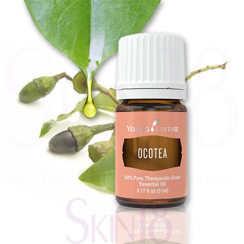 Young Living Ocotea Essential Oil