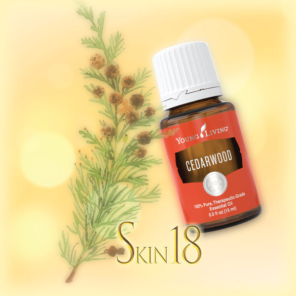 Cedarwood Essential Oil Single