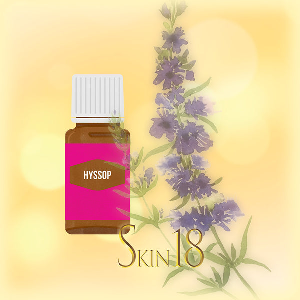 Hyssop Essential Oil Single