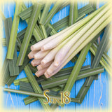 Lemongrass Essential Oil Single