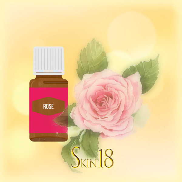 Rose Essential Oil Single
