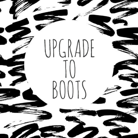 Boot Upgrade
