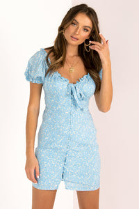 Casey Dress / Blue