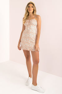Rowena Dress / Blush
