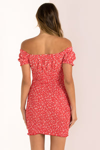 Rhiannon Dress / Red Floral