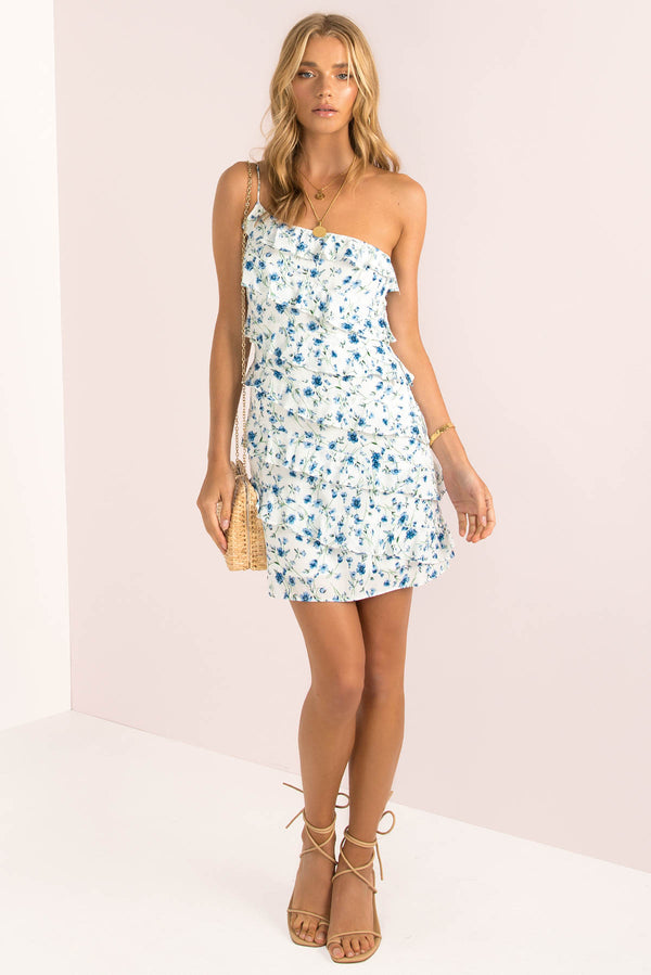 Indigo Dress / White