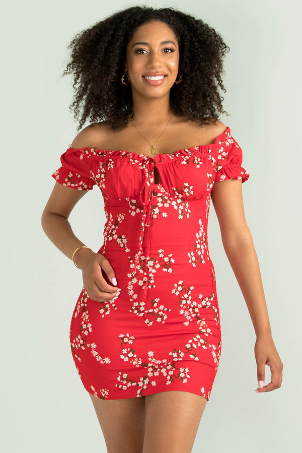 Belle Dress / Red Floral