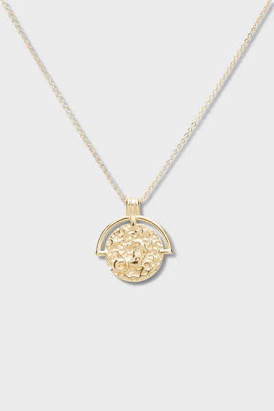 Astrology Necklace - Capricorn