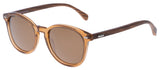 SIN Risky Business Clear Brown w/ Brown Polarised