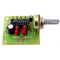 1W Stereo Amplifier, KIT - Requires Assembly