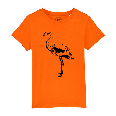 Boys Flamingo T-Shirt - Tiger Prints