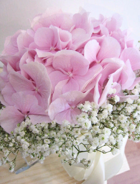 Bridal (Hydrangea with baby's breath)