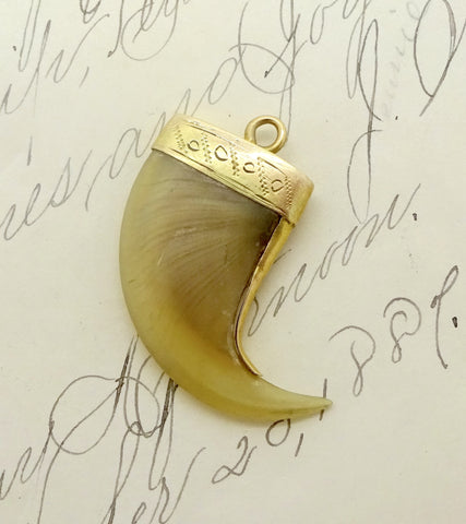 Antique 14K GOLD MOUNTED TIGER CLAW Pendant Charm British Raj Period Tourist Souvenir Jewelry