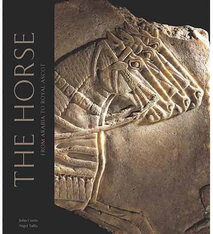 The Horse: From Arabia to Royal Ascot - the exhibition catalogue from British Museum available to buy at Museum Bookstore