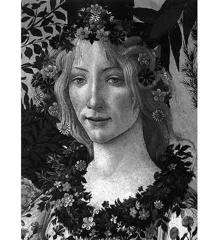 Botticelli - the exhibition catalogue from Museum Bookstore available to buy at Museum Bookstore