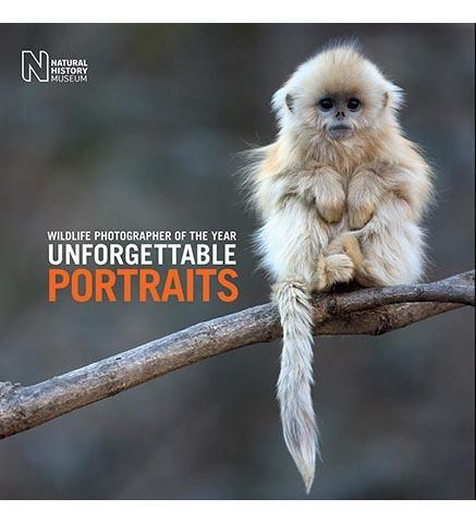 Wildlife Photographer of the Year: Unforgettable Portraits - the exhibition catalogue from Natural History Museum available to buy at Museum Bookstore