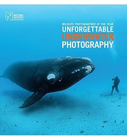 Wildlife Photographer of the Year: Unforgettable Underwater Photography - the exhibition catalogue from Natural History Museum available to buy at Museum Bookstore