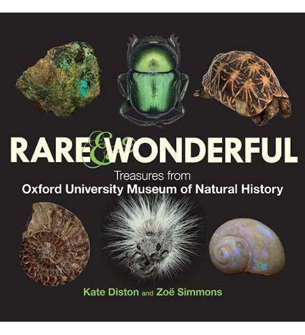 Rare & Wonderful : Treasures from the Oxford University Museum of Natural History - the exhibition catalogue from Oxford University Museum of Natural History available to buy at Museum Bookstore