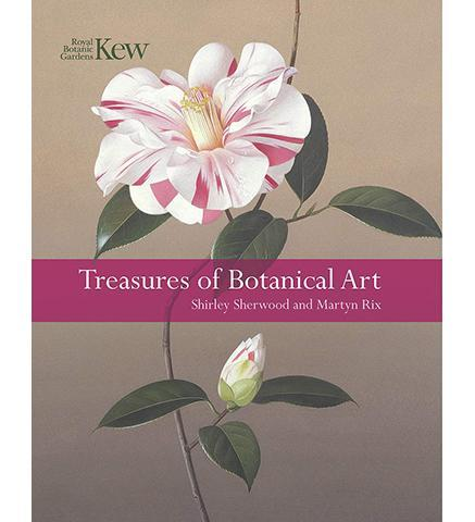 Treasures of Botanic Art - the exhibition catalogue from Royal Botanic Gardens, Kew available to buy at Museum Bookstore