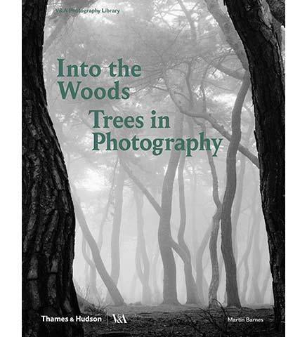 Into the Woods: Trees in Photography - the exhibition catalogue from V&A available to buy at Museum Bookstore