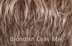 Blondish Gray Mix