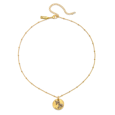 Capricorn Zodiac Talisman Charm Necklace