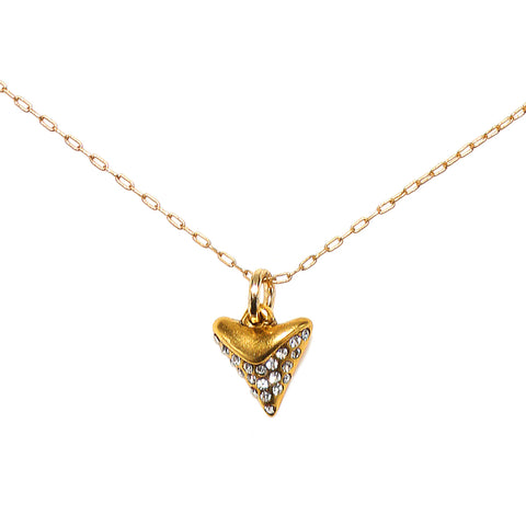 Shark Tooth Talisman Necklace