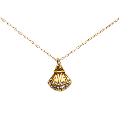 Baby Scallop Shell Talisman Necklace